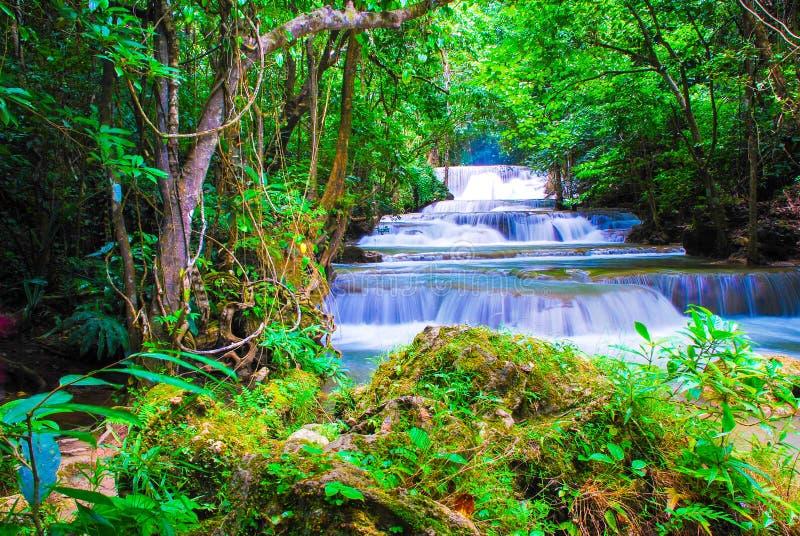 Cachoeiras na floresta em Kanchanaburi, Tailândia foto de stock