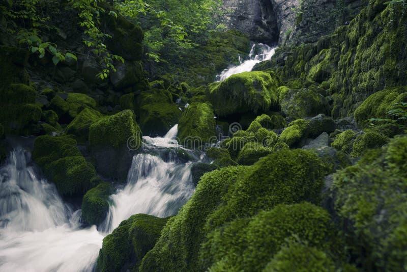 Cachoeiras na natureza imagens de stock