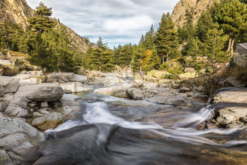 Cachoeiras nas montanhas do vale de Restonica em Córsega imagens de stock