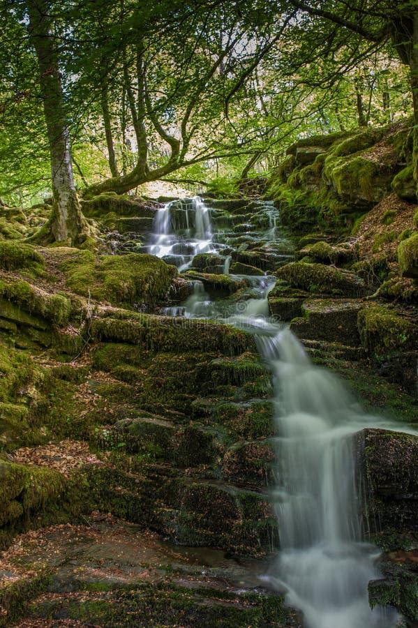 Cachoeiras no Birks imagens de stock royalty free