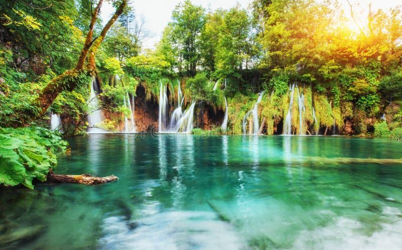 Cachoeiras no parque nacional que cai no lago de turquesa Plitvice, Croatia fotos de stock royalty free