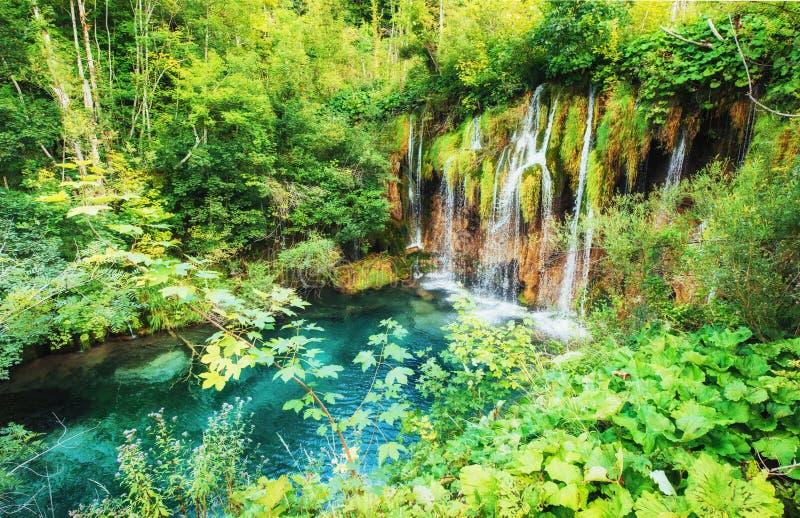 Cachoeiras no parque nacional que cai no lago de turquesa Plitvice, Croatia imagem de stock royalty free