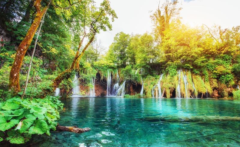 Cachoeiras no parque nacional que cai no lago de turquesa Plitvice, Croatia imagens de stock