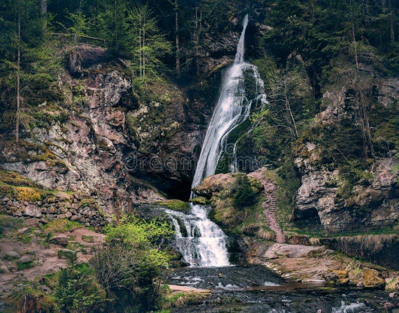 Cachoeiras pequenas da montanha dentro do landsape do cenário da floresta Desat foto de stock royalty free