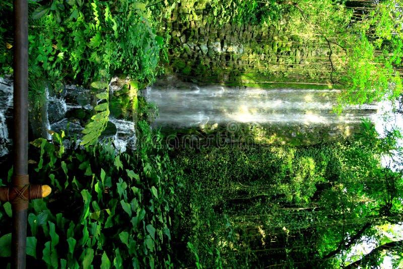 Download Cachoeiras sintéticas imagem de stock. Imagem de homem - 26511951