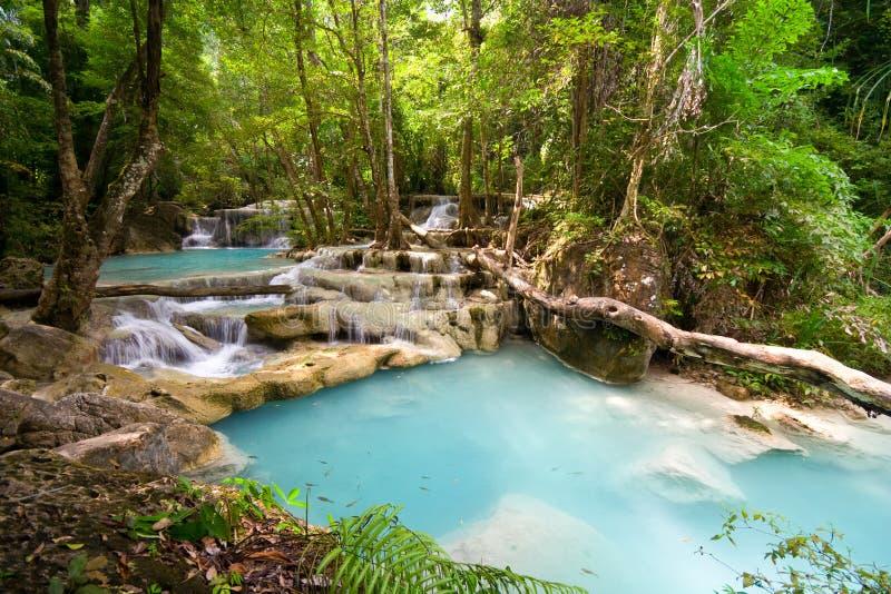 Cachoeiras tropicais da selva imagens de stock