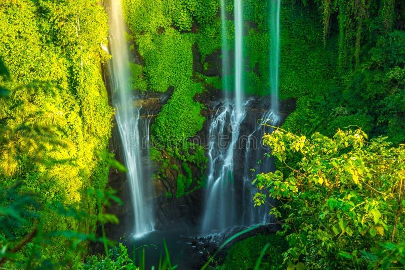 Cachoeiras tropicais de Sekumpul na ilha de Bali, Indonésia imagens de stock