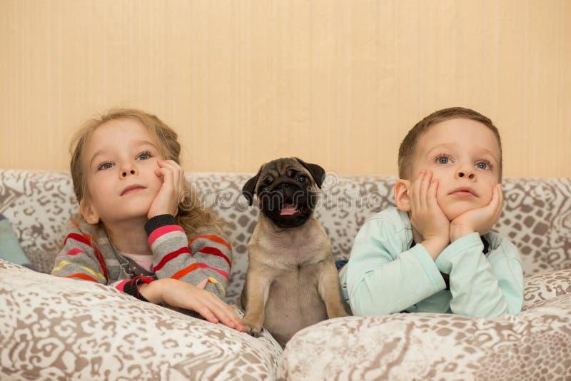 Cachorrinho bonito do pug e crianças bonitos, tevê do relógio fotografia de stock