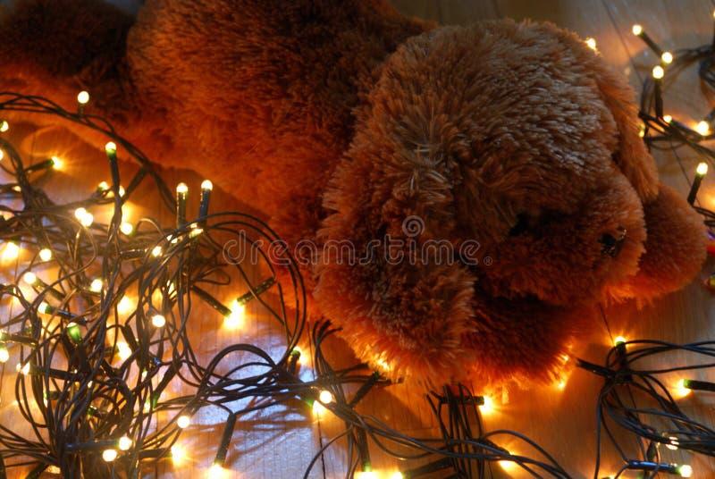 Cachorrinho da peluche que encontra-se em luzes feericamente com cores mornas fotografia de stock