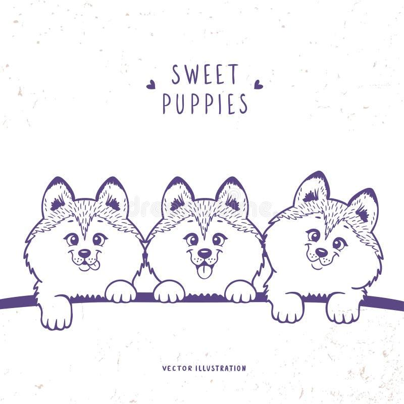 Cachorrinho três bonito ilustração do vetor
