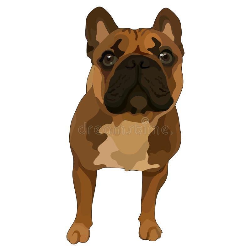 Cachorro de cerdo stock de ilustración