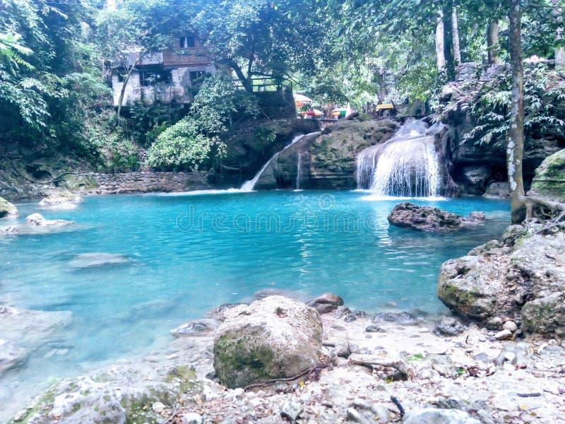 Cachuira w Filipiny obraz stock