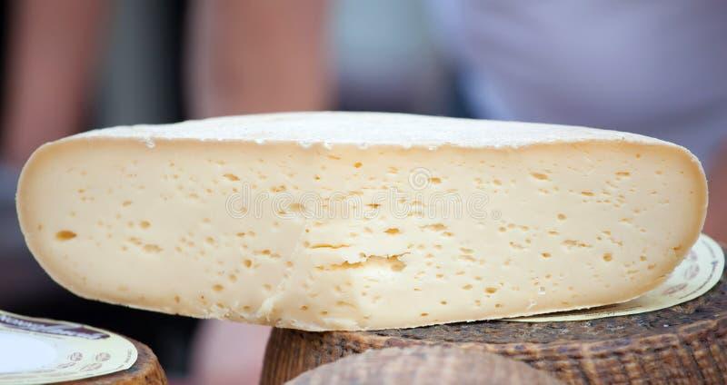 Caciotta fresco, queijo italiano imagens de stock royalty free