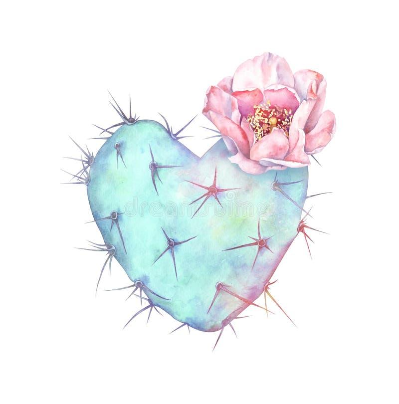 Cacto de pera espessa em chamas isolado sobre fundo branco Ilustração aquosa do cacto em forma de coração ilustração royalty free