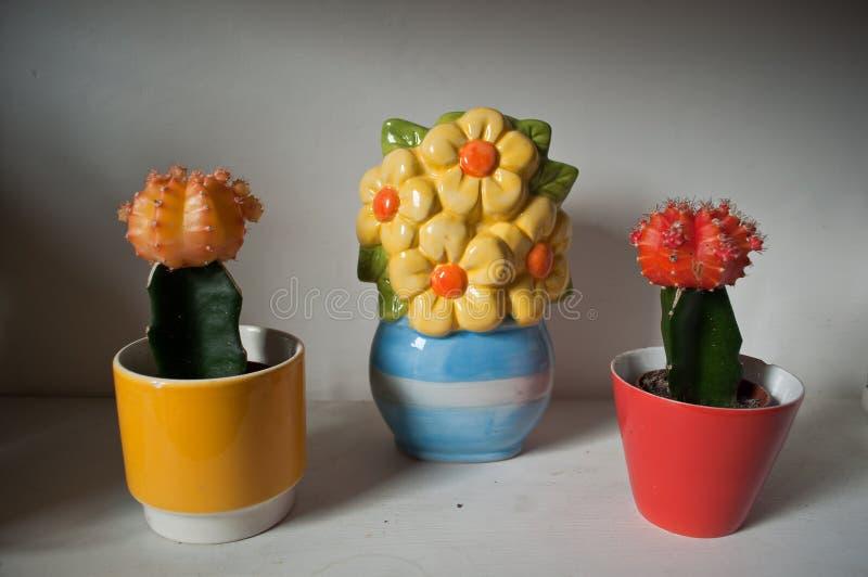 Cacto e flores cerâmicas imagens de stock royalty free