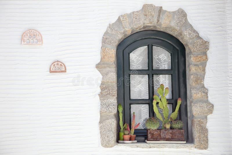 Cacto na frente de uma janela foto de stock royalty free