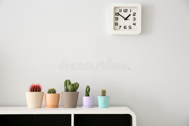 Cactos bonitos em uns vasos de flores no armário branco fotos de stock royalty free