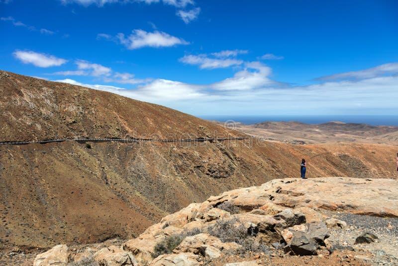 Cactos e o vulcão no horizonte, as Ilhas Canárias fotografia de stock