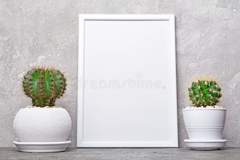 Cactos pequenos em uns potenciômetros de flor e em um modelo do quadro branco com espaço da cópia para o cartaz imagens de stock