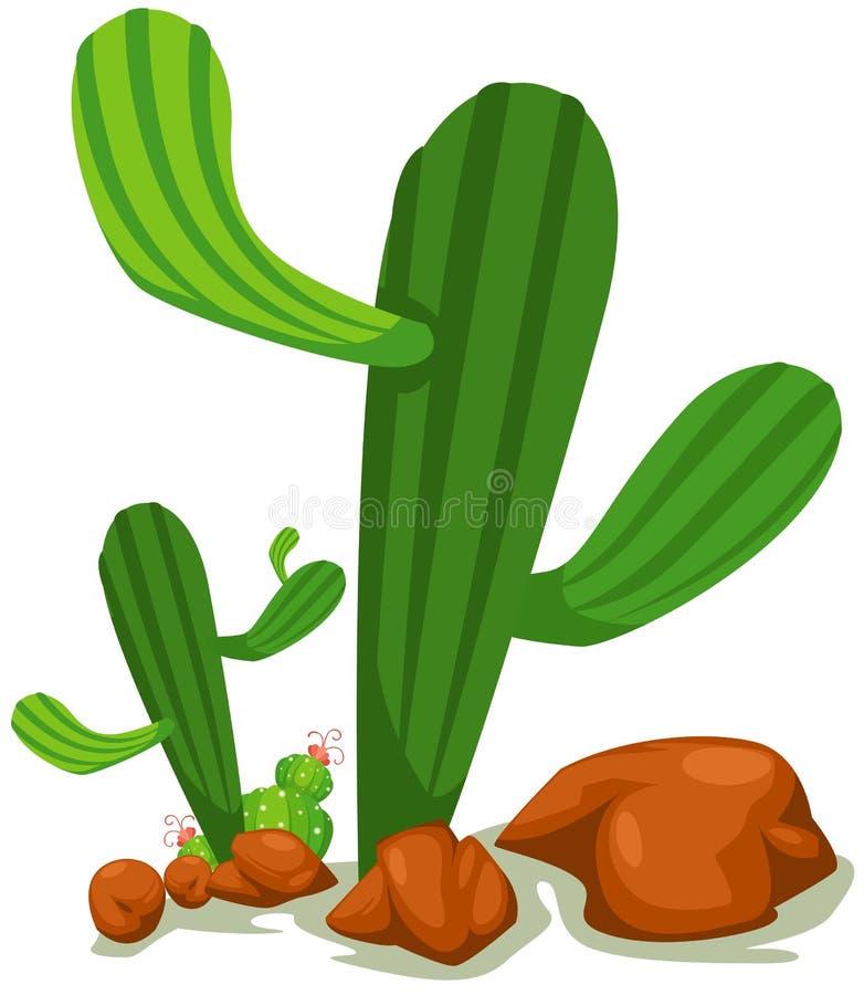 Download Cactus stock vector. Image of cartoon, drawing, green - 18834827