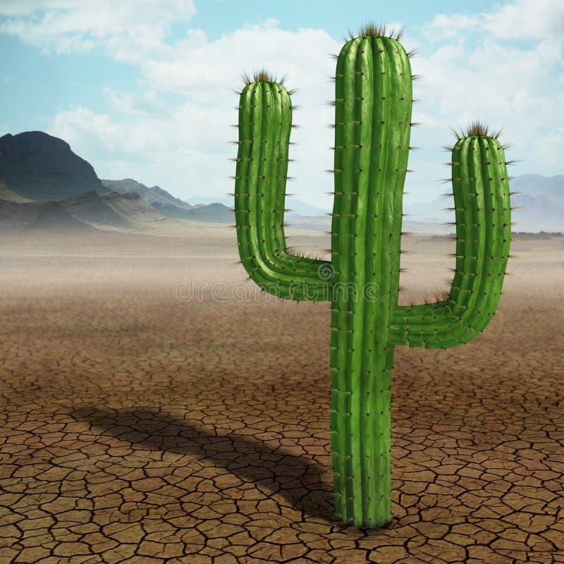 Cactus stock de ilustración