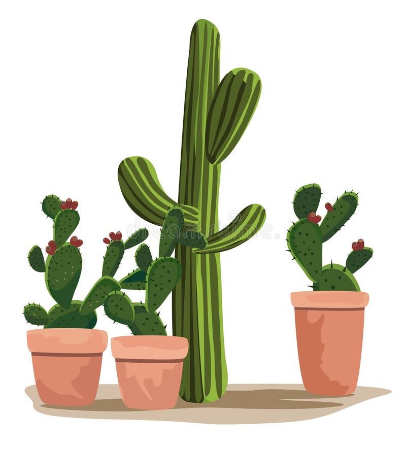 Cactus royalty-vrije illustratie