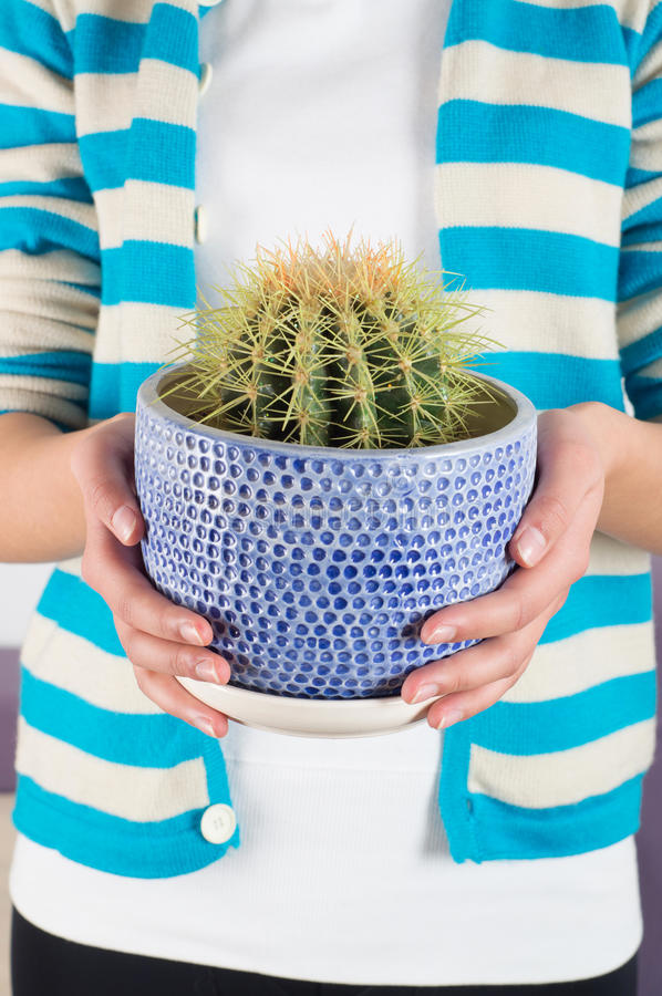 Download Cactus stock photo. Image of holding, pots, cultivation - 29024226