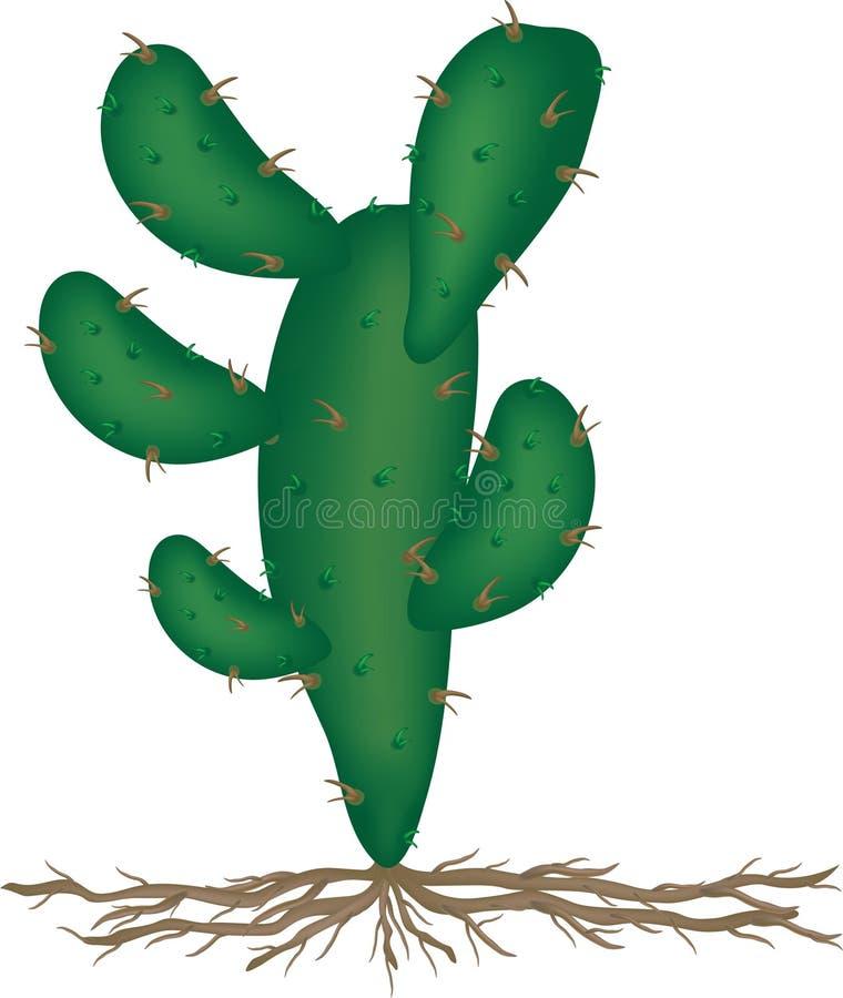 Cactus illustrazione di stock