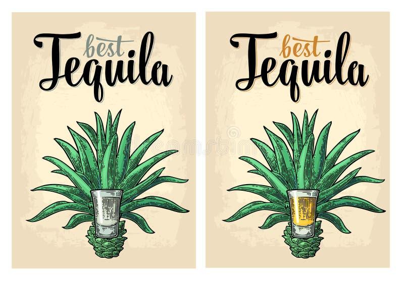 Cactus blauwe agave met glastequila Uitstekende vectorgravureillustratie voor etiket, affiche, Web royalty-vrije illustratie