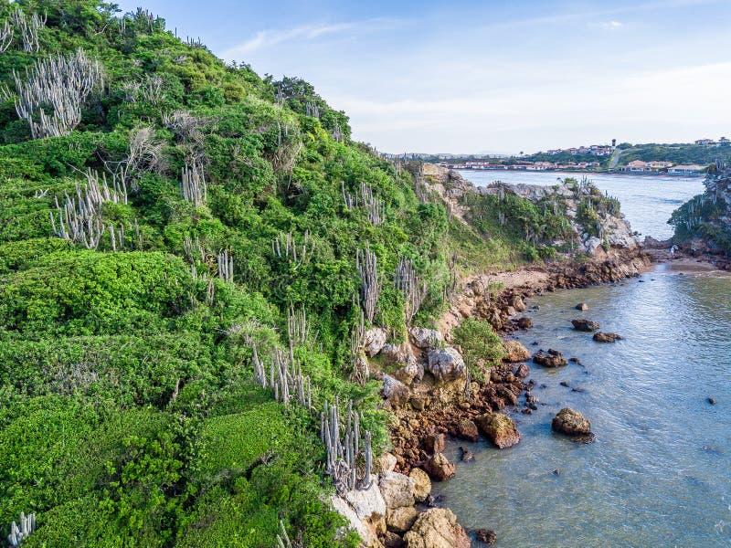 Cactus brasileños península Naturaleza salvaje montañas y el Océano Atlántico Ponta hace a Pai Vitorio Buzios, Rio de Janeiro fotos de archivo libres de regalías