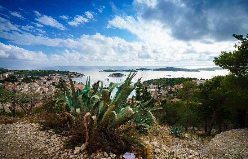 Cactus, cielo asombroso y vista panorámica de la ciudad de Hvar y de la bahía de la fortaleza española fotos de archivo libres de regalías