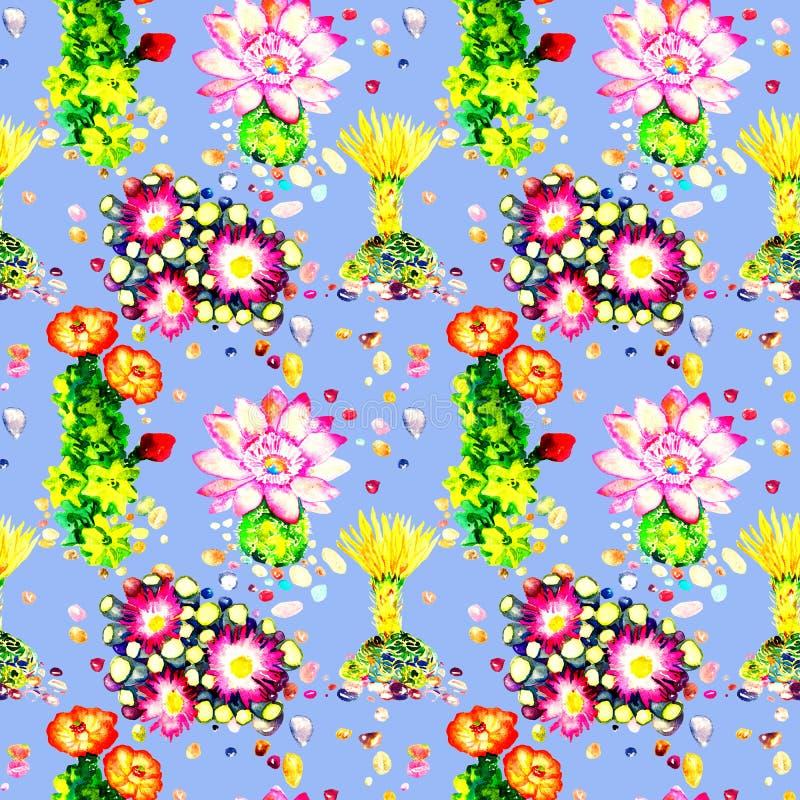 Cactus con las flores rosadas y amarillas, piedras coloridas, diseño inconsútil del modelo en fondo azul brillante libre illustration