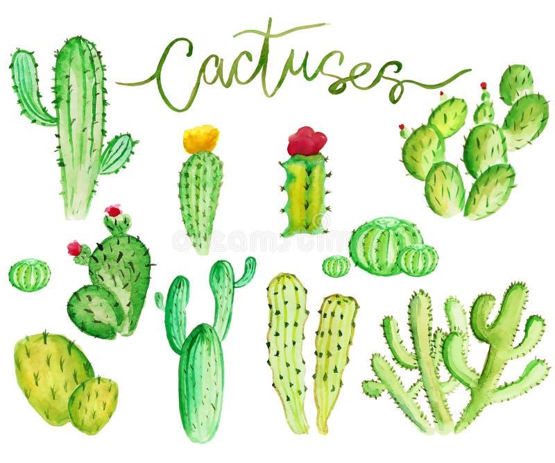 Cactus d'aquarelle illustration libre de droits