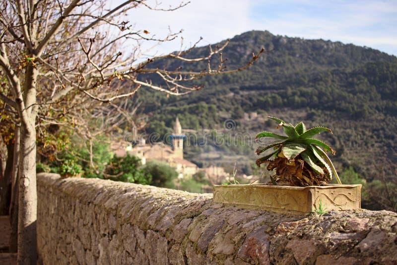 Cactus dans un pot sur un mur, une église, des arbres et une colline à l'arrière-plan dans Valldemossa, Majorque, Espagne image stock