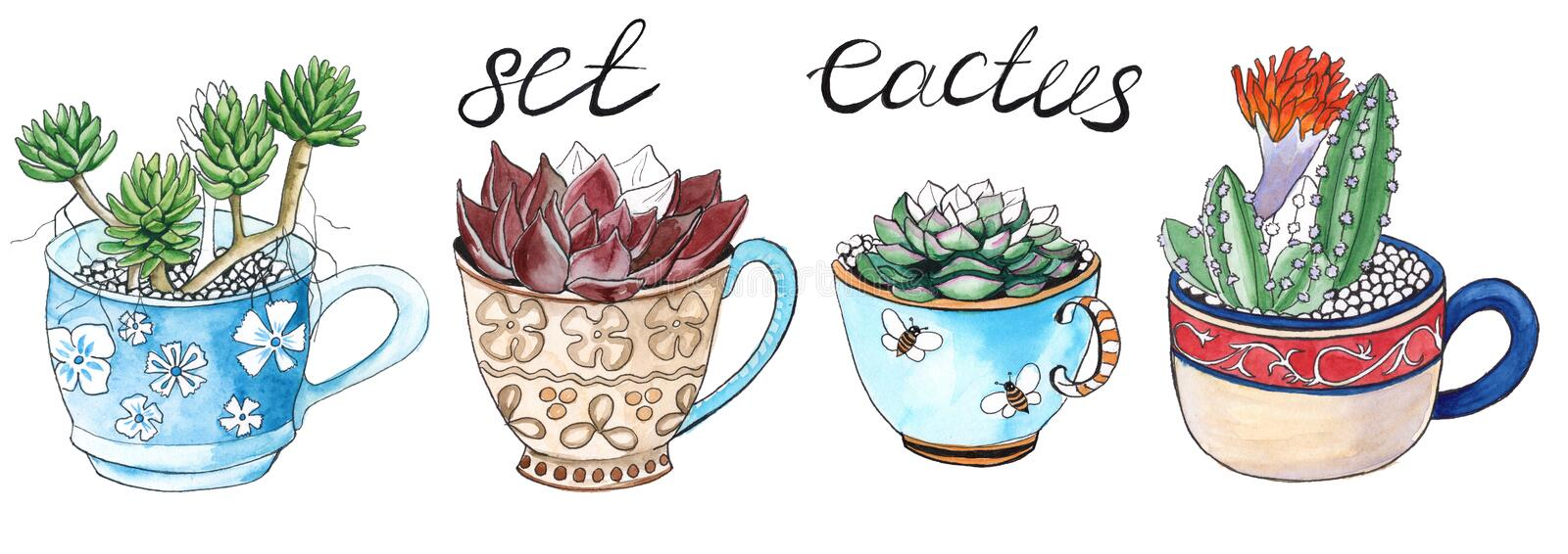Cactus dans une tasse D'isolement watercolor illustration stock