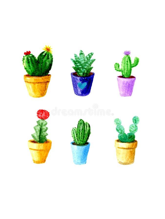 Cactus dell'acquerello messo su fondo bianco illustrazione vettoriale