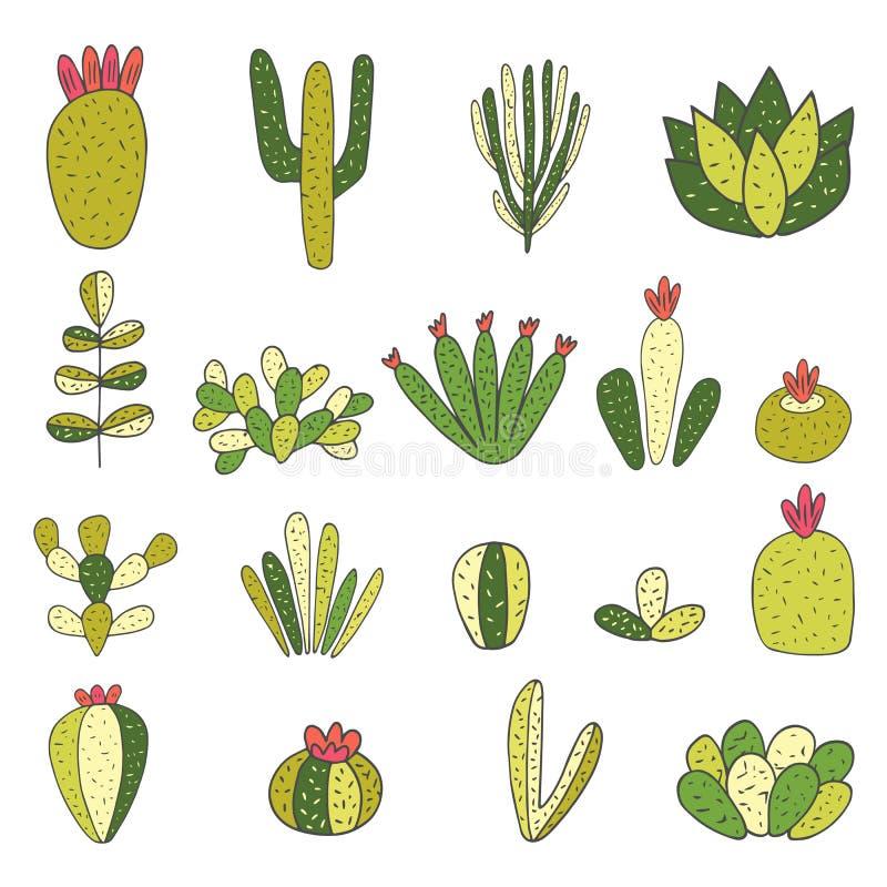 Cactus dibujado mano linda del garabato, colección suculenta libre illustration