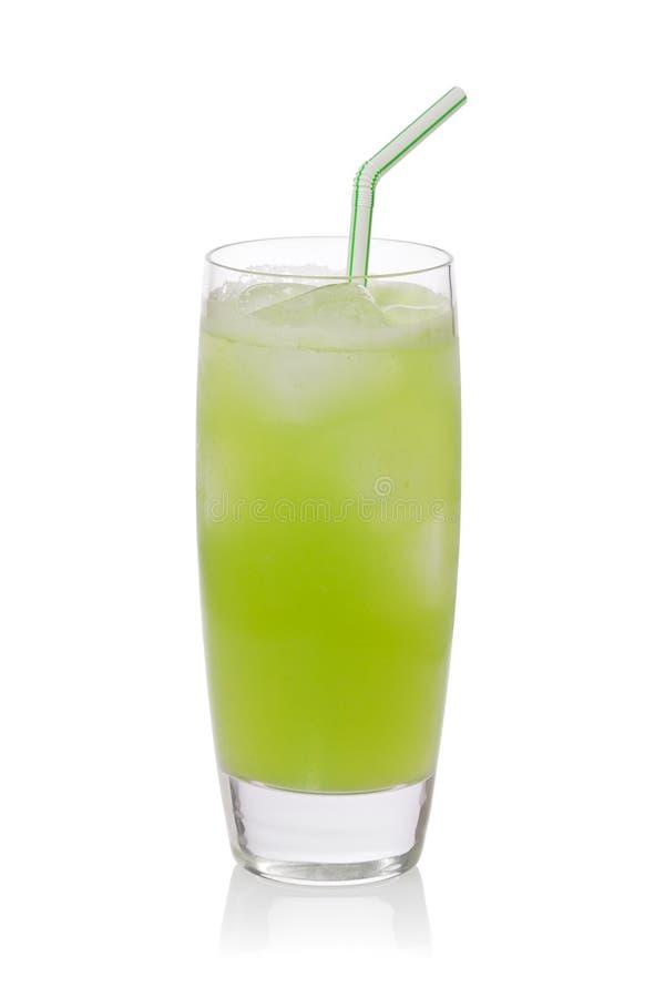Cactus Drink royalty free stock photos