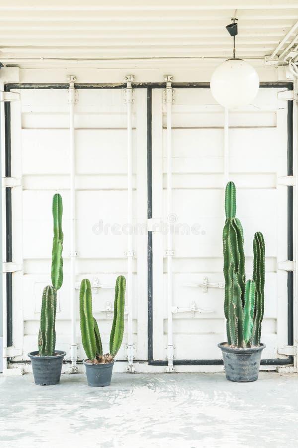 cactus en la decoración del florero fotografía de archivo libre de regalías
