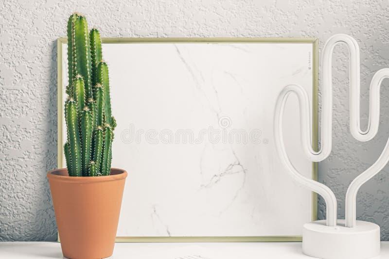 Cactus en la mesa imágenes de archivo libres de regalías