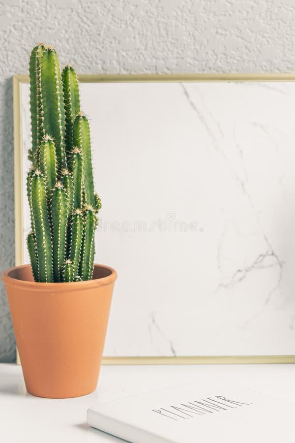 Cactus en la mesa imagenes de archivo