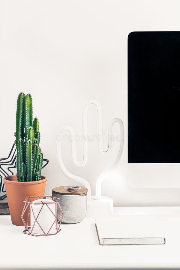 Cactus en la mesa fotos de archivo libres de regalías