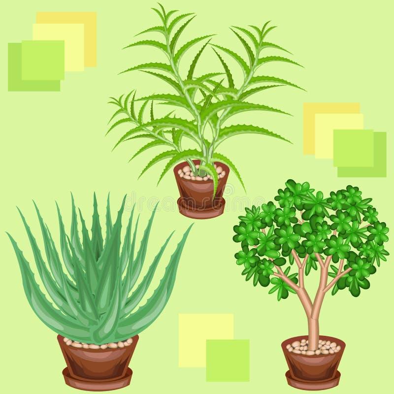 Cactus en potes en un fondo verde Un modelo de lujo Conveniente como papel pintado encendido, como fondo para los productos de em libre illustration