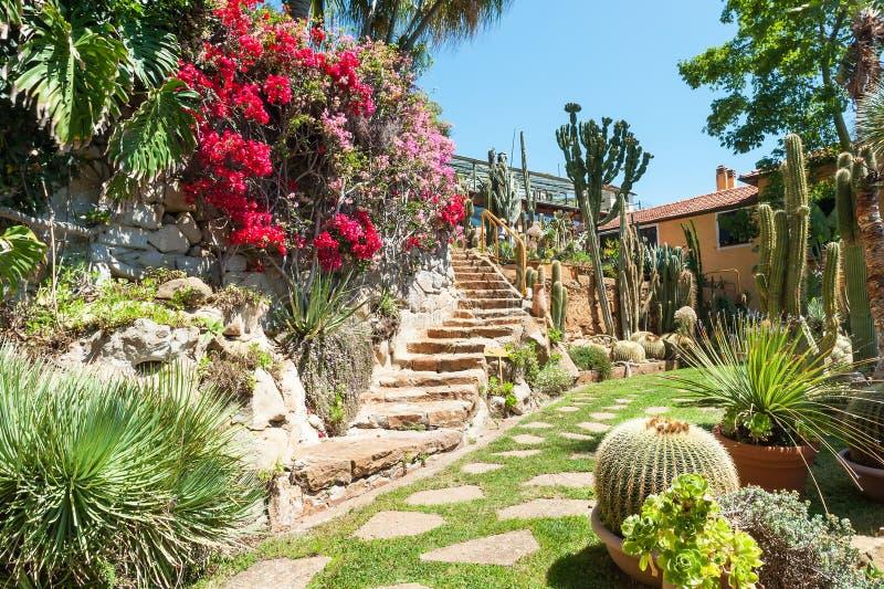 Garden Of Exotic Plants Pallanca Stock Image Image Of