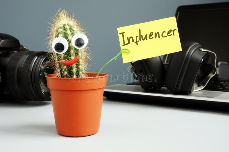 Cactus holding sign influencer. Laptop for blogging and social media content stock images