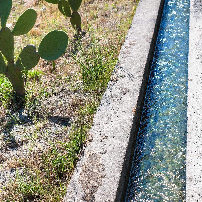 Cactus and irrigating ditch in Sicily. Agricultural tourism in Italy - cactus and irrigating ditch in Sicily royalty free stock photography