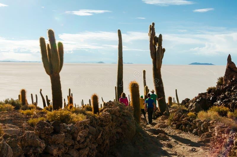 Cactus island in the Bolivian salt flat of Uyuni. Family among giant cactuses in the salt flats of Bolivia, parents, kids, uyuni, island, sunny, desert, vastness stock images