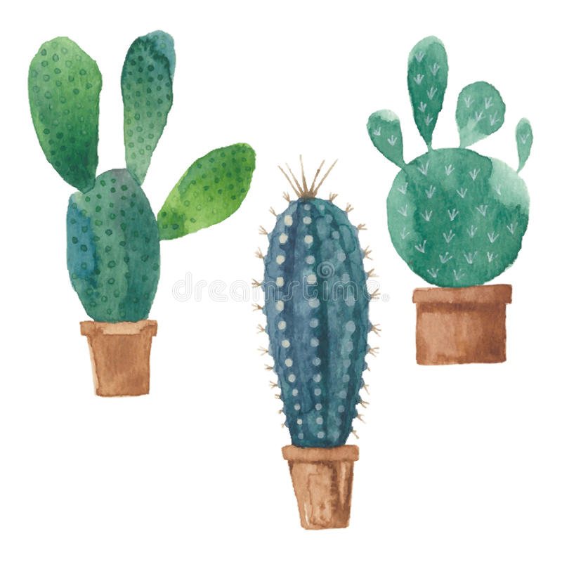 Free Cactus Isolated On White Background. Vector, Watercolor Hand Dra Stock Photography - 52243992
