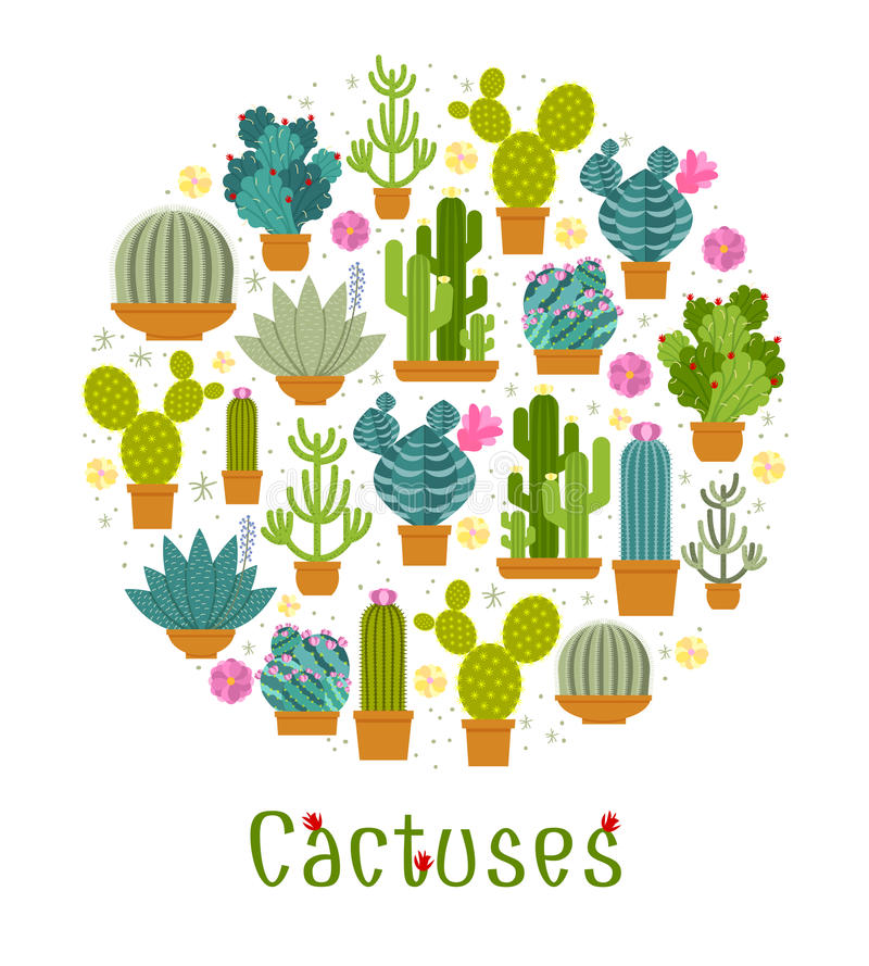 Cactus label. Spiny and barb, blossom and flowerpot, mexican and tropical. Vector illustration royalty free illustration