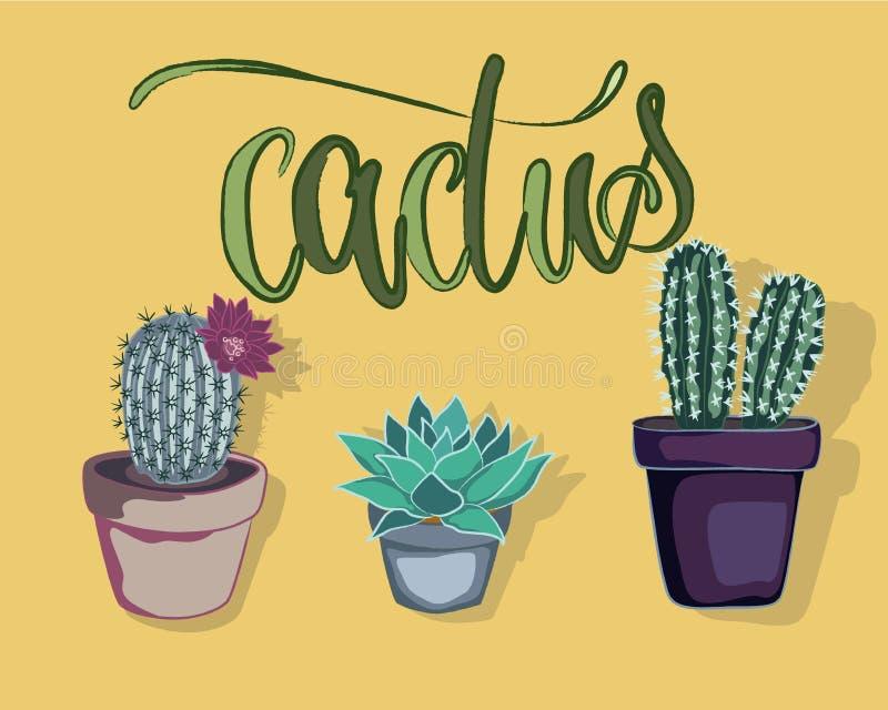 Cactus nell'icona della pianta immagine stock